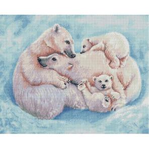 Все вместе. Семья белых медведей 40х50см Алмазная мозаика вышивка на подрамнике APK79060