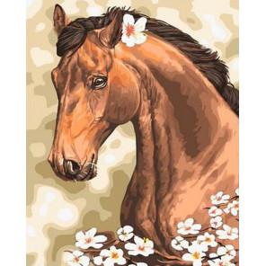 Лошадь на лугу Раскраска картина по номерам на холсте GX37904