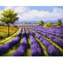 Лавандовое поле Раскраска картина по номерам на холсте Molly KH0970
