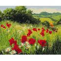 Луговые цветы Раскраска картина по номерам на холсте Molly KH0972
