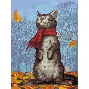 Кот в шарфе Раскраска картина по номерам с цветной схемой на холсте Molly KK0674