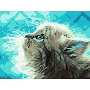 Пушистый котенок Раскраска картина по номерам с цветной схемой на холсте Molly KK0675