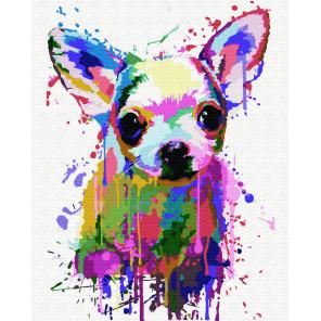 Цветной песик Раскраска картина по номерам на холсте ZX 23293