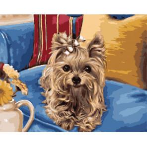 Любимая собачка Раскраска картина по номерам на холсте ZX 20559
