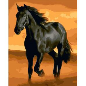 Вороной конь Раскраска картина по номерам на холсте ZX 23249