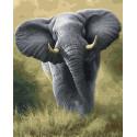 Африканский слон Раскраска картина по номерам на холсте ZX 22934