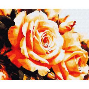 Чайная роза Раскраска картина по номерам на холсте ZX 22947