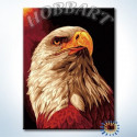 Гордый орел Раскраска картина по номерам на холсте Hobbart HB3040140-LITE