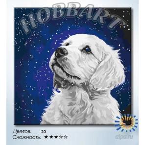 Преданный Раскраска картина по номерам на холсте Hobbart DZ4040002-LIE
