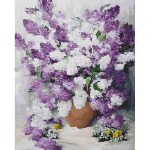 Персидская сирень Раскраска картина по номерам на холсте 921-AB