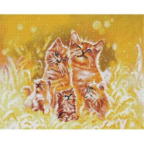 Счастье быть семьей/ Коты 40х50 см Алмазная мозаика на подрамнике APK59002
