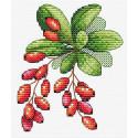 Барбарис Набор для вышивания МП Студия М-595