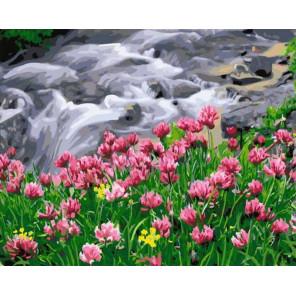 Горный ручей Раскраска картина по номерам на холсте GX38045
