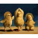Завораживающий танец птенцов Раскраска картина по номерам на холсте GX38035