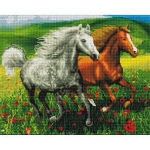 Лошади в маковом поле Алмазная мозаика вышивка на подрамнике GF4249