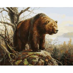 Хозяин 40х50 см Раскраска картина по номерам на холсте PK90025