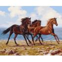 Морской бриз 40х50 см Раскраска картина по номерам на холсте PK90024
