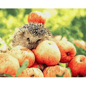 Яблочный урожай Раскраска картина по номерам на холсте GX25353
