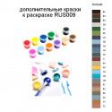 Дополнительные краски для раскраски RUS009