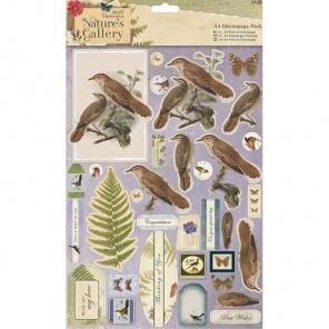 Птицы Nature's Gallery Набор бумаги и высеченных элементов для скрапбукинга, кардмейкинга Docrafts