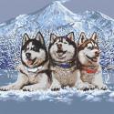 Раскладка Хаски в горах Раскраска по номерам на холсте Живопись по номерам