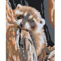 Раскладка Енот мечтатель Раскраска по номерам акриловыми красками на холсте Живопись по номерам