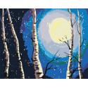 Березки и луна Раскраска по номерам на холсте Живопись по номерам RA146