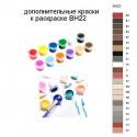 Дополнительные краски для раскраски BH22