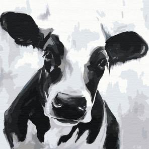 Черно-белая бурёнка 80х80 см Раскраска картина по номерам на холсте