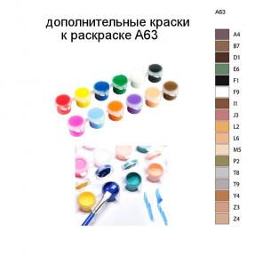 Дополнительные краски для раскраски A63