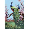 Сад с павлинами Раскраска по номерам на холсте Живопись по номерам KRYM-FN08