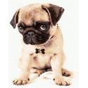 Милый щенок Раскраска картина по номерам на холсте GX38736