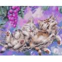 Сладкий сон Раскраска картина по номерам на холсте GX38649