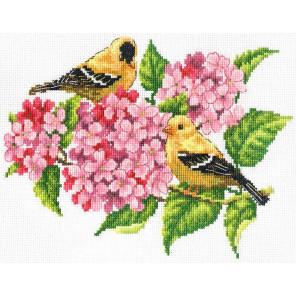 Щеглы Набор для вышивания Многоцветница МКН 22-14