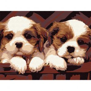 Симпатичные друзья Раскраска картина по номерам на холсте (холст на твердой основе) KH0743