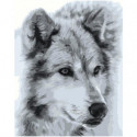 Волк черно-белый 100х125 Раскраска картина по номерам на холсте
