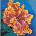 Гибискус 80х80 Раскраска картина по номерам на холсте