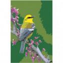 Желтая птичка на ветке Раскраска картина по номерам на холсте
