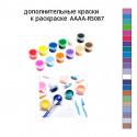 Дополнительные краски для раскраски AAAA-RS087