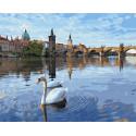 Лебеди в Праге Раскраска картина по номерам на холсте GX32610