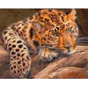 Африканский леопард Раскраска картина по номерам на холсте GX29463
