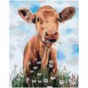 Корова с ромашками Раскраска картина по номерам на холсте