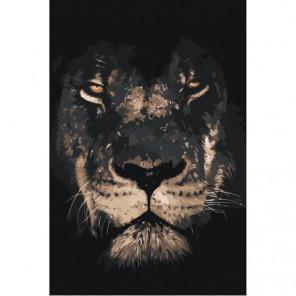 Лев в тени Раскраска картина по номерам на холсте