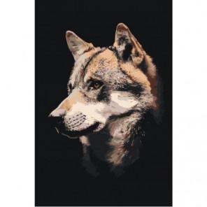 Морда волка Раскраска картина по номерам на холсте