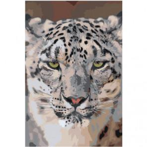 Снежный барс 100х150 Раскраска картина по номерам на холсте