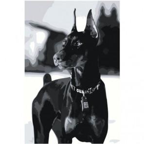 Доберман черно-белый Раскраска картина по номерам на холсте