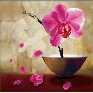 Цветок орхидеи Алмазная частичная вышивка (мозаика) Color Kit