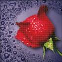 Красная роза Алмазная частичная вышивка (мозаика) Color Kit