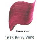 1613 Винная ягода Наружного применения Акриловая краска FolkArt Plaid