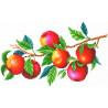 Урожай яблок Канва с рисунком для вышивки МП Студия СК-106